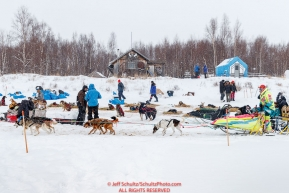 Monica Zappa runs past resting teams on her way to a parking place after checking in to the Iditarod checkpoint on Friday, March 9th during the 2018 Iditarod Sled Dog Race -- AlaskaPhoto by Jeff Schultz/SchultzPhoto.com  (C) 2018  ALL RIGHTS RESERVED